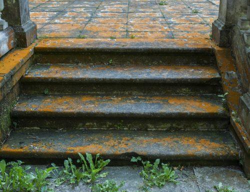 VSB Blog 18 – WEG Reform Harmonisierung von Miet- und Wohnungseigentumsrecht